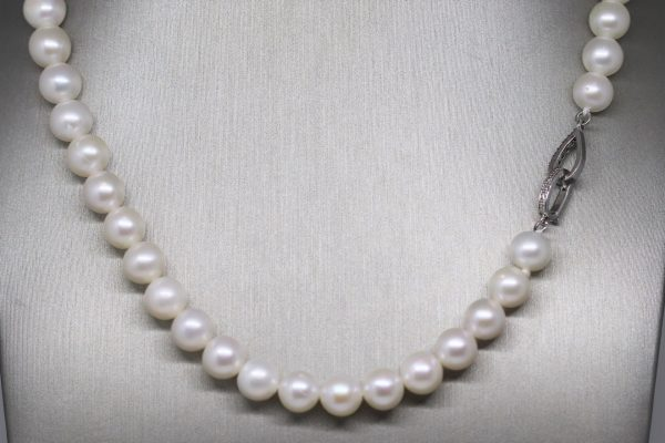 Australian Natural Pearl Silver Necklace 7.5-8 mm